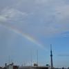 スカイツリーと虹と月