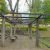 竹園東公園の藤棚~つくば市とその周辺の風景写真案内(403)