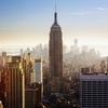 ニューヨークに住んだ際、アパートにネズミや害虫が出た時の対処法!