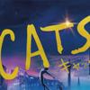 【感想・考察】映画『キャッツ』が人間の恐怖心を駆り立てる全ての理由