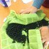 黒豆酵素と卵酒
