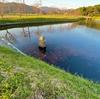 茶屋原池(福岡県筑前)