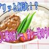 【永遠の疑問】うんこ味のカレーと、カレー味のうんこ。