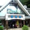 高尾山は登山しなくても楽しめる♪温泉も入れて一日満喫しちゃおう!