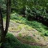 自由な伝統工芸家の他界、デッキから見える庭