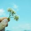「人生もうやだ!」と思ったら今すぐはじめろ!幸せに生きたい人がやるべき5つのこと