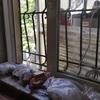 【アゼルバイジャン】パンの儀式とデビューと憂鬱な日々