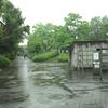雨の強い日に