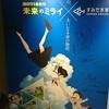 「未来のミライ」とのコラボ展示を見に、すみだ水族館に行ってみた。(墨田区押上)
