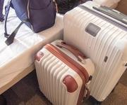 Go Toキャンペーン強行へ…「旅行に行きたい人」の調査結果に驚きの声が