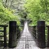 茨城の新緑美「花貫渓谷」の汐見滝吊り橋を包む青モミジ