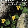 沈黙の春を読んでの感想