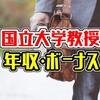 【最新】北海道大学教授の年収は860.3万円!給料、ボーナス、採用初任給をまとめました!