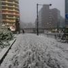 都内、久々の大雪の予感
