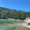 鍋田浜海水浴場 下田のローカルビーチは子連れで楽しみやすい!