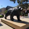 UCLA〜留学体験記1〜