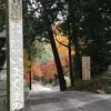 1day京都・紅葉を観に