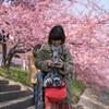 岡崎で河津桜を見ながらフォトウォークしました