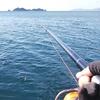 【青物のカゴ釣りチャレンジ】ハートブレイク・オブ・ニューイヤーフィッシング【18ブラスト……散る】
