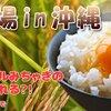 【デザイン練習13日目】社畜アイドルみちゃき、シェフ宮川の絶品料理が食べられる?!
