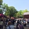 根津神社のツツジが満開で、人がすごかった!!