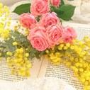 flower7pollenの日記