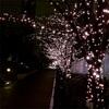 毎年楽しみな大崎五反田のピンクイルミネーション