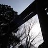 【ヒューマンデザイン】入門5年目になりました