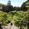 【京都初夏】三室戸寺の新緑、参道の階段からの眺め【動画あり】