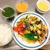 ほうれん草&トマトドレッシングの野菜たっぷりサラダ~のり子先生の食育教室~