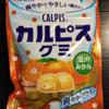 114日目 【新商品】カルピスグミ 温州みかん