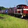 福島臨海鉄道へ!その2 コンテナ貨物の撮影