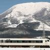治療も沁みない、ナゲーのフーケー 本気の伊吹山と、雪の名鉄電車