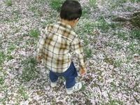 つねる、噛む、引っ掻く…2歳の息子の変化にオロオロ。実は「◯◯」のせいでした!