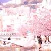 【珍道中】熱海、梅と桜の旅〜まずは桜!