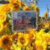 〔ライブレポ〕ベイビーレイズJAPAN 林 愛夏ハピバ LIVE ~生まれて出会ってくれてありがとう!~ @音霊 OTODAMA SEA STUDIO