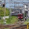 近鉄、鮮魚列車の団臨を撮る。