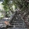 【兵庫県神戸市】神戸布引ハーブ園へ行ってきました!! ハイキングとロープウェイとどちらも楽しめるスポット!!!