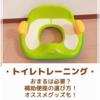 【トイレトレーニング】おまるは必要?補助便座の選び方とオススメグッズ!