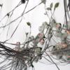 ロボットのブドウの木がカオス理論とバタフライ効果を教えてくれる