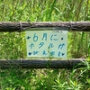 北八朔公園の自然池(神奈川県横浜)