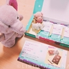 北海道のおみやげ隠れた名品!北のチョコレートサンドは見た目に反してハードなお菓子