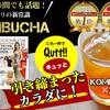 菌活するならQutt-tea(キュッティ)のコンブチャ