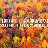【第14回 じぶん年金便り】2019年11月末の運用状況