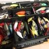 クランクベイトオンリーで釣行するということ