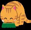 猫「俺の所有物を飼い主がなんかイジってるの気になってしゃないんだがwwww」