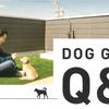 ≪DOG GARDEN≫ Q&A後半