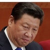 日本会議国会議員懇談会、国賓来日「中止」求める