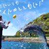 赤字施設を2年で再生!?壱岐イルカパークの復活ストーリー!