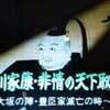 徳川家康・非情の天下取り ~大阪の陣・豊臣家滅亡の時~